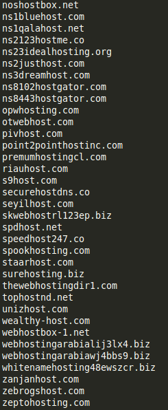 Examples of look-alike domains mimicking hosting providers and DNS services2.png