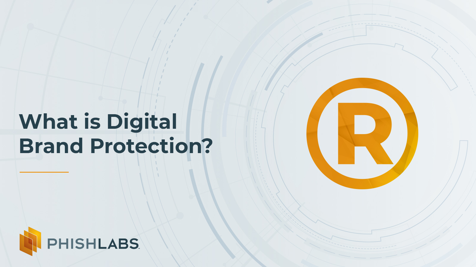 What is Digital Brand Protection