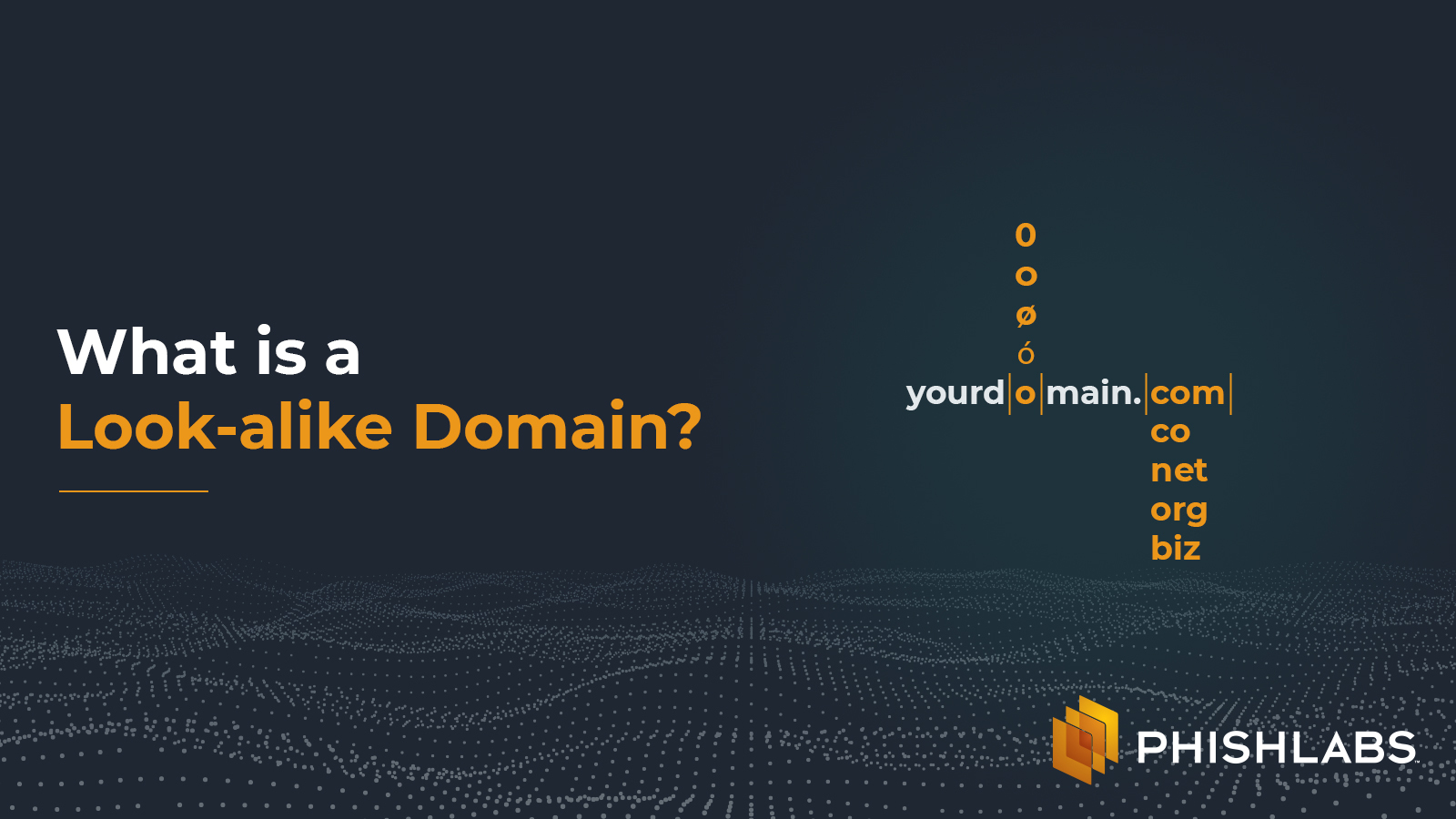What is a look-alike domain?